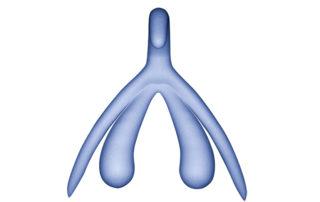3D-Klitoris blau